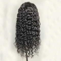 Brazilian Water Wave Lace Front Wig Human Hair Water Wave Wigs